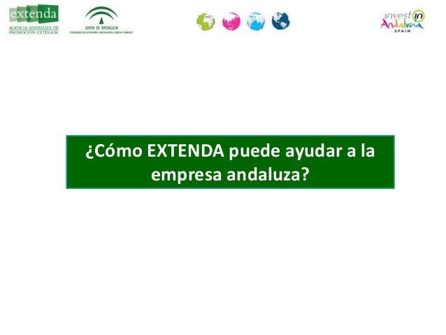 En Andalucía • Información : JJTT, O.N., estadísticas… • Consultoría: diagnóstico, consultas, apoyo a marcas... • Promoció...