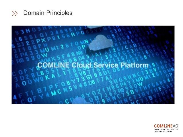 Domain Principles