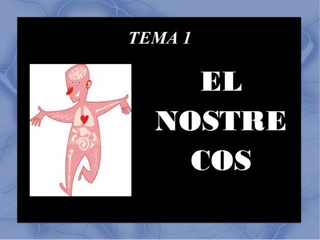 TEMA 1 EL NOSTRE COS