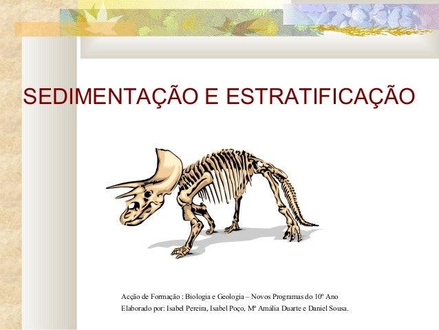 SEDIMENTAÇÃO E ESTRATIFICAÇÃO Acção de Formação : Biologia e Geologia – Novos Programas do 10º Ano Elaborado por: Isabel P...