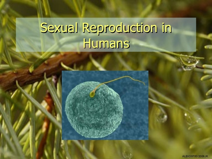 Sexual Reproduction in       Humans                         ALBIO9700/2006JK