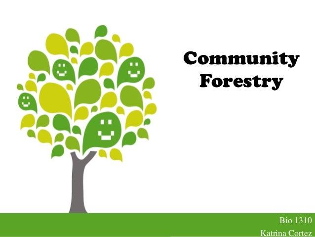 CommunityForestryBio 1310Katrina Cortez