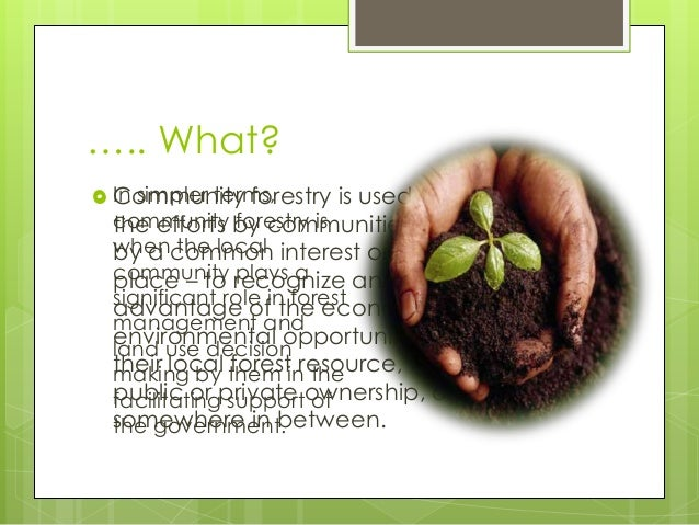….. What? Community forestry is used to describethe efforts by communities – those unitedby a common interest or by a sen...