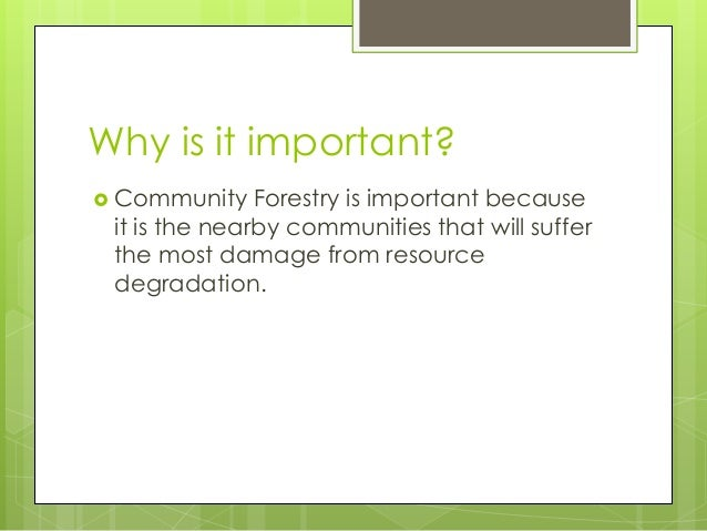 Why is it important? Community Forestry is important becauseit is the nearby communities that will sufferthe most damage ...