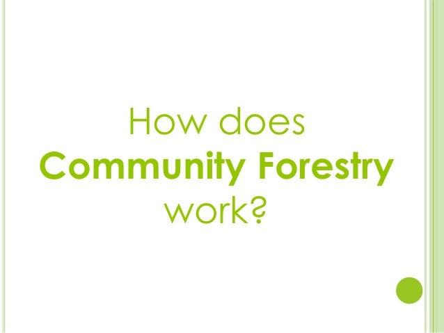How doesCommunity Forestrywork?