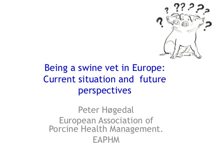 Being a swine vet in Europe:Current situation and  future perspectives<br />Peter Høgedal<br />European Association of Por...