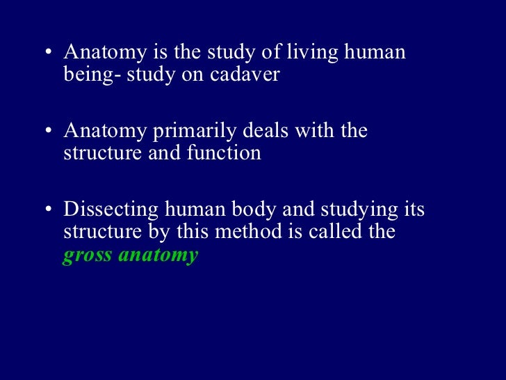 Luxury Anatomy Is Study Of Component Anatomy And Physiology