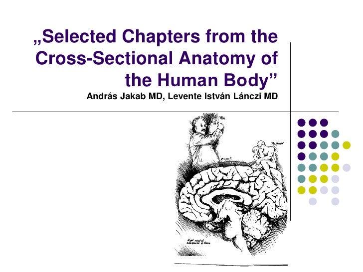 """""""SelectedChaptersfromtheCross-SectionalAnatomy ofthe Human Body""""András Jakab MD, Levente István Lánczi MD<br />"""