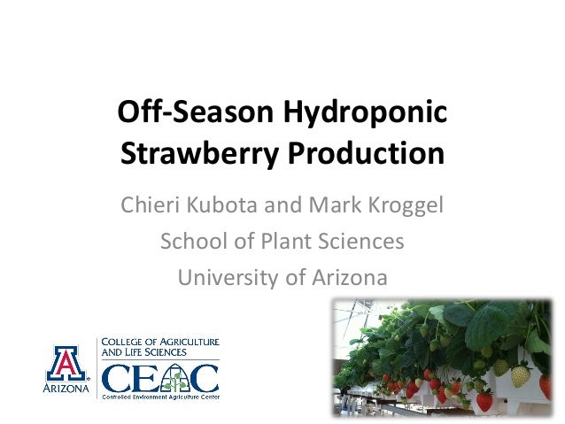 Off-Season Hydroponic Strawberry Production Chieri Kubota and Mark Kroggel School of Plant Sciences University of Arizona
