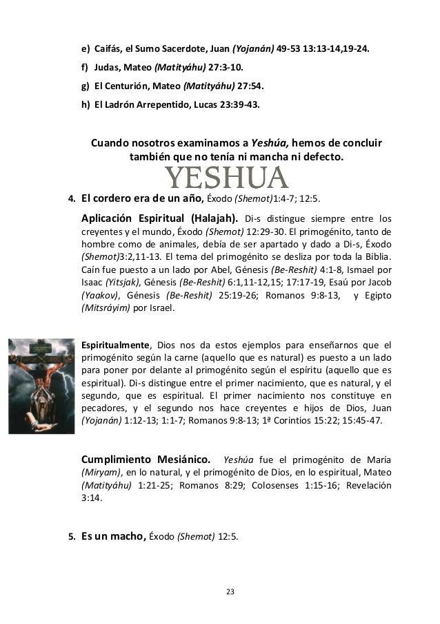 23 e) Caifás, el Sumo Sacerdote, Juan (Yojanán) 49-53 13:13-14,19-24. f) Judas, Mateo (Matityáhu) 27:3-10. g) El Centurión...