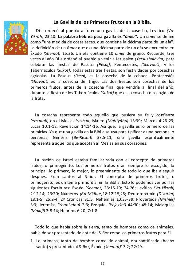 57 La Gavilla de los Primeros Frutos en la Biblia. Di-s ordenó al pueblo a traer una gavilla de la cosecha, Levítico (Va- ...