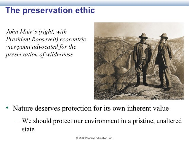 Essential environment 4e chapter 1 powerpoints expanding ethical consideration 33 fandeluxe Choice Image