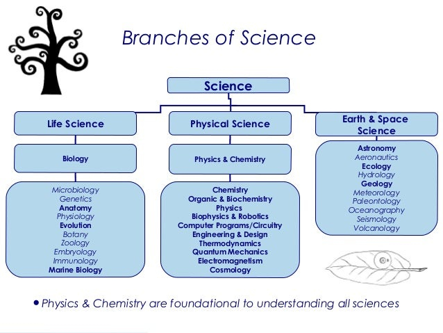 an overview of three branches of science biology chemistry and geology Medical related branches of biology study all fields that are related to illnesses, alterations and functions of the human body physiology physiology is the study of the functions of living beingsa branch that deals with studying the respiratory, reproductive, nervous system etc.