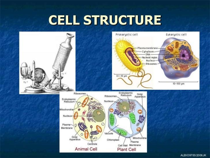 CELL STRUCTURE ALBIO9700/2006JK