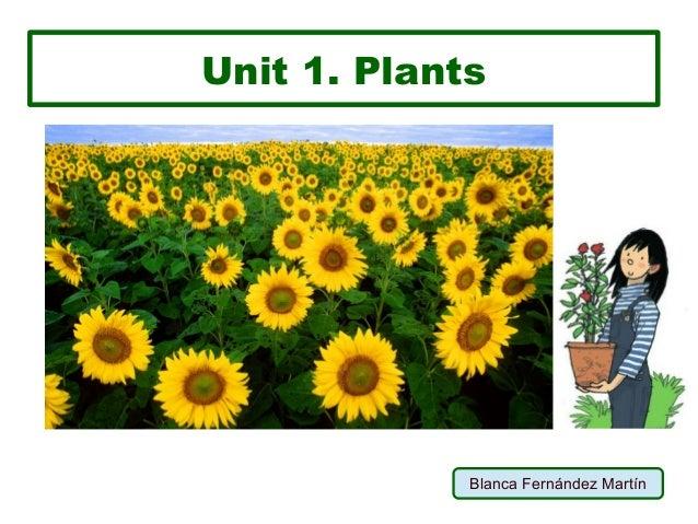 Unit 1. Plants Blanca Fernández Martín
