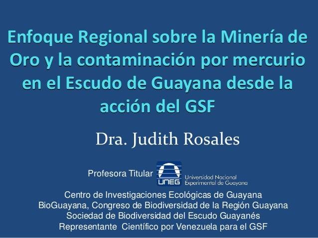 Enfoque Regional sobre la Minería deOro y la contaminación por mercurio  en el Escudo de Guayana desde la            acció...