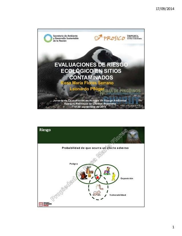 17/09/2014 1 EVALUACIONES DE RIESGO ECOLÓGICO EN SITIOS CONTAMINADOS Rosa María Flores Serrano Leonardo Pflüger Jornada de...