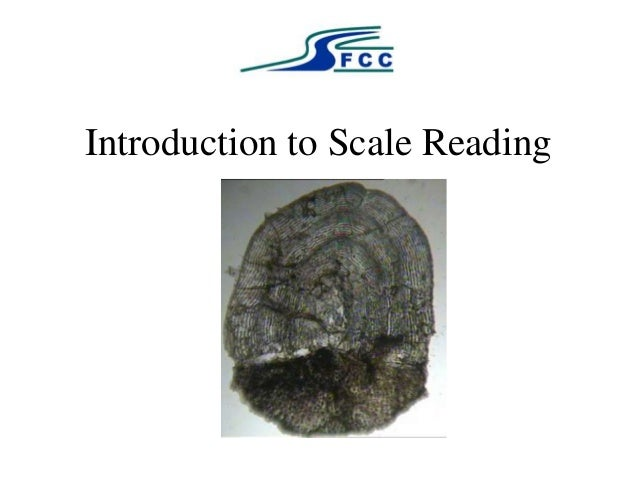 SFCC Introduction to Scale Reading