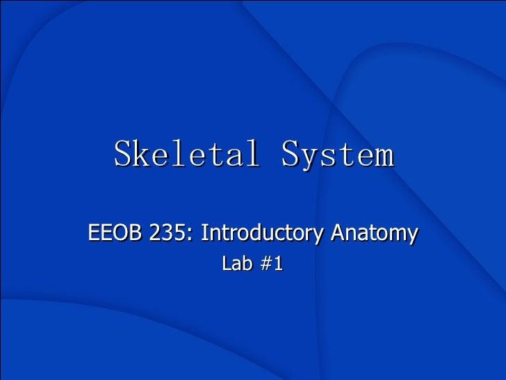Skeletal System EEOB 235: Introductory Anatomy Lab #1