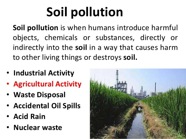 01 soil pollution tg for What is soil for kids