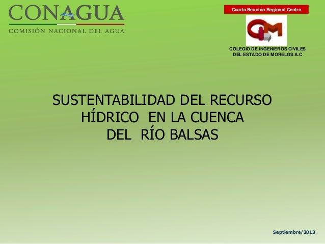 SUSTENTABILIDAD DEL RECURSO HÍDRICO EN LA CUENCA DEL RÍO BALSAS Septiembre/2013 COLEGIO DE INGENIEROS CIVILES DEL ESTADO D...