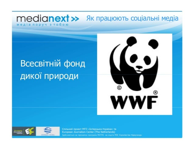 wwf case study World wide fund for nature wwf harvard case study solution and analysis of harvard business case studies solutions – assignment helpin most courses studied at harvard business schools, students are provided with a case study.
