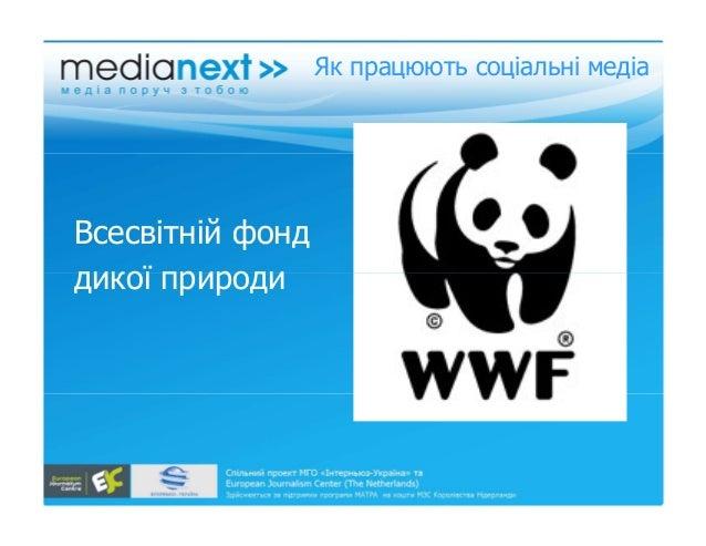 Як працюють соціальні медіа Всесвітній фонд дикої природидикої природи