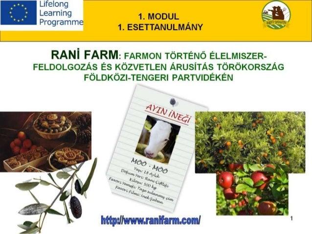 Élelmiszer-feldolgozás a vállalkozásokban és közvetlen értékesítés - Esettanulmány