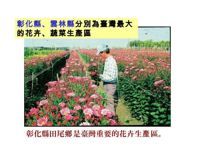 彰化縣田尾 是臺灣重要的花卉生 區。鄉 產 彰化縣、雲林縣分別為臺灣最大 的花卉、蔬菜生產區