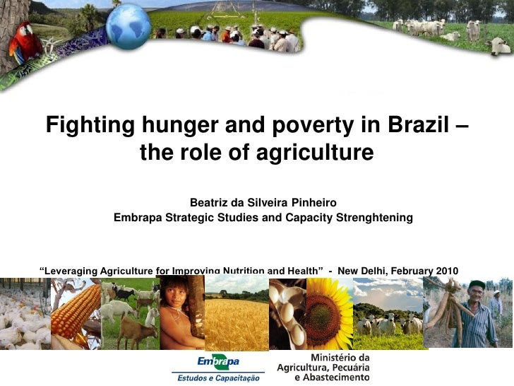 Fighting hunger and poverty in Brazil –          the role of agriculture                            Beatriz da Silveira Pi...