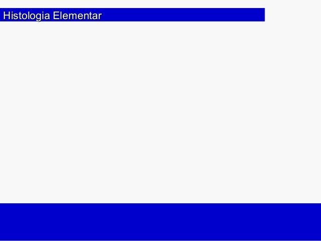 Histologia ElementarHistologia Elementar