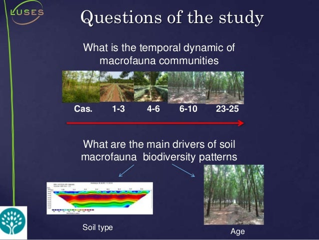 The impact of rubber trees plantations on soil functional for Soil organic carbon