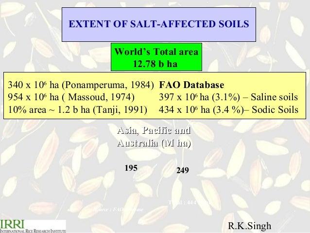 R.K. Singh .Breeding for salt tolerance in rice Slide 3