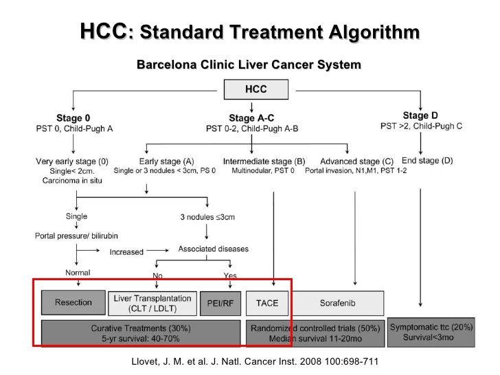 HCC : Standard Treatment Algorithm Barcelona Clinic Liver Cancer System Llovet, J. M. et al. J. Natl. Cancer Inst. 2008 10...