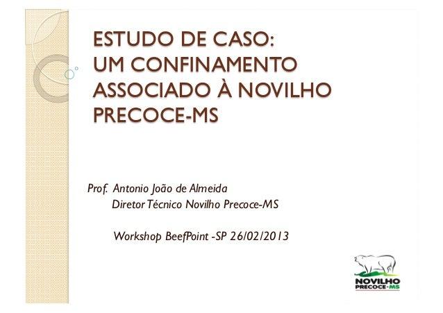 Prof. Antonio João de Almeida      Diretor Técnico Novilho Precoce-MS     Workshop BeefPoint -SP 26/02/2013