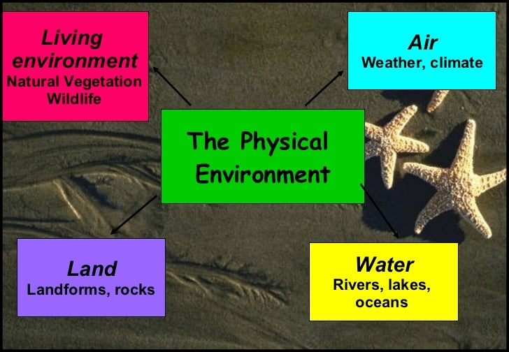 Free Worksheets worksheet food : 02 Chap 3 The Physical And Human Environment (Jan 08)