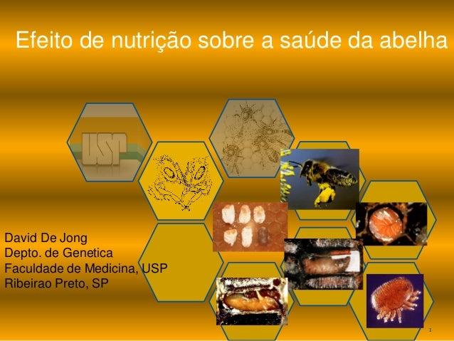 1  Efeito de nutrição sobre a saúde da abelha  David De Jong  Depto. de Genetica  Faculdade de Medicina, USP  Ribeirao Pre...