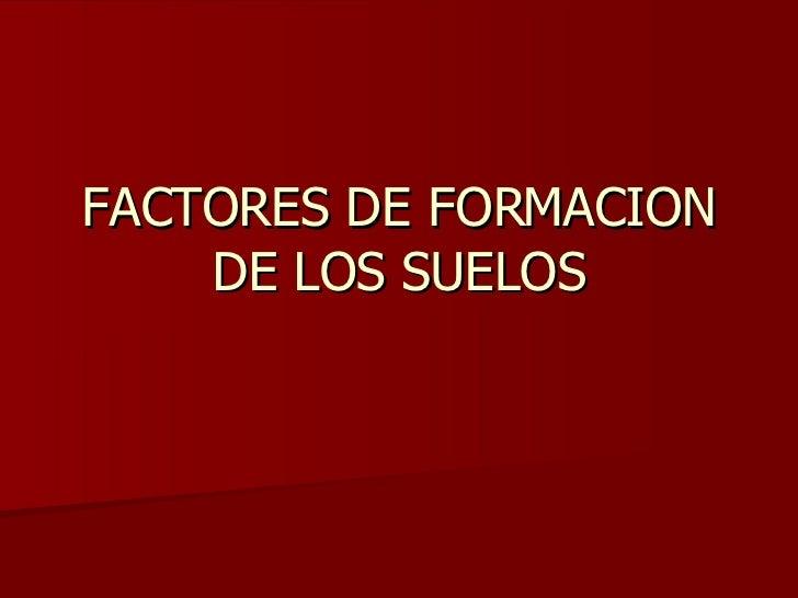02 factores formadores de los suelos for Formacion de los suelos