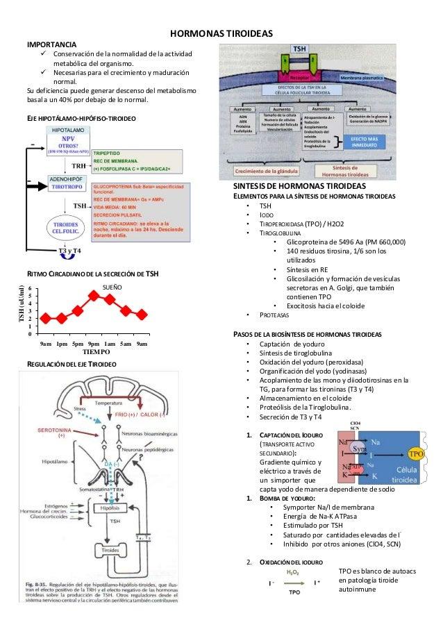 HORMONAS TIROIDEAS              IMPORTANCIA                      Conservación de la normalidad de la actividad           ...