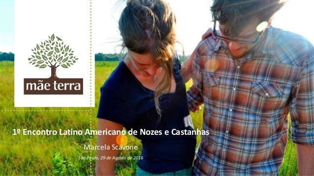 1º Encontro Latino Americano de Nozes e Castanhas Marcela Scavone São Paulo, 29 de Agosto de 2016