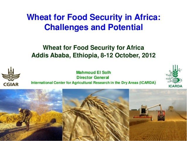 Wheat for Food Security in Africa:   Challenges and Potential    Wheat for Food Security for Africa Addis Ababa, Ethiopia,...