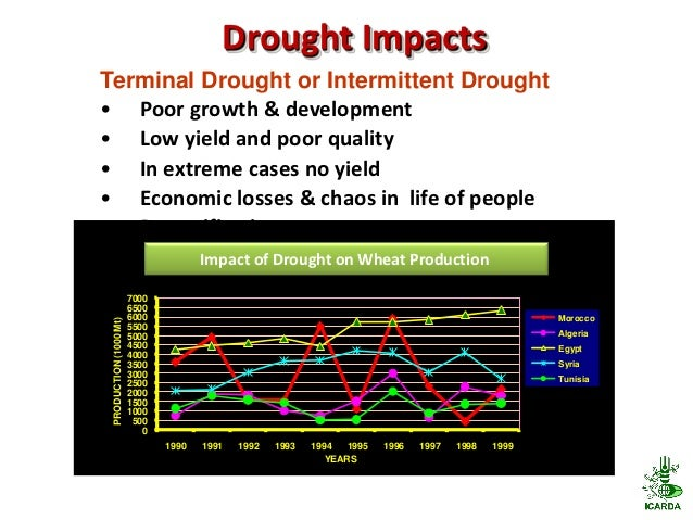 Drought ImpactsTerminal Drought or Intermittent Drought• Poor growth & development• Low yield and poor quality• In extreme...