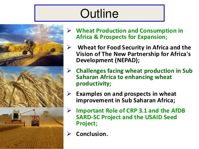 Outline Wheat Production and Consumption in  Africa & Prospects for Expansion; Wheat for Food Security in Africa and the...