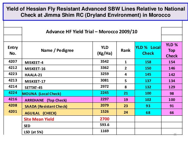 Yield of Hessian Fly Resistant Advanced SBW Lines Relative to National      Check at Jimma Shim RC (Dryland Environment) i...