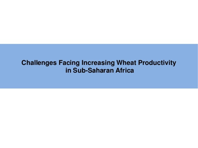 Challenges Facing Increasing Wheat Productivity             in Sub-Saharan Africa