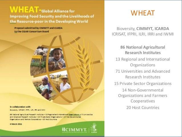 WHEAT   Bioversity, CIMMYT, ICARDAICRISAT, IFPRI, ILRI, IRRI and IWMI    86 National Agricultural       Research Institute...