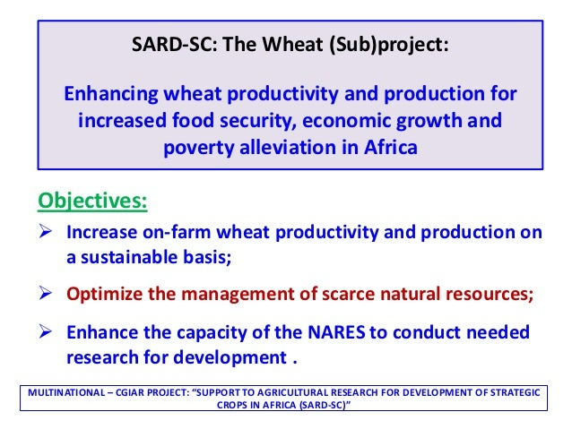 SARD-SC: The Wheat (Sub)project:      Enhancing wheat productivity and production for       increased food security, econo...