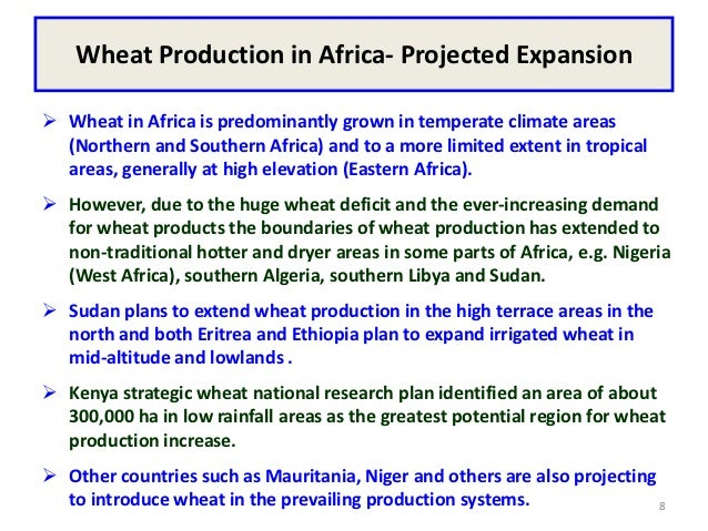 Wheat Production in Africa- Projected Expansion Wheat in Africa is predominantly grown in temperate climate areas  (North...