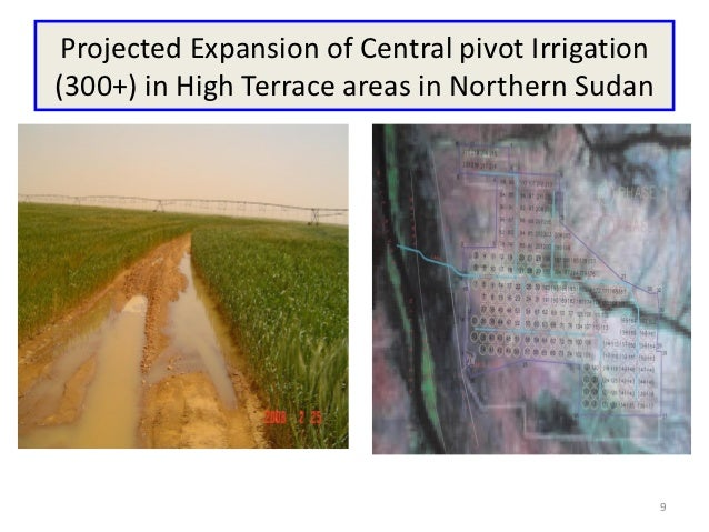 Projected Expansion of Central pivot Irrigation(300+) in High Terrace areas in Northern Sudan                             ...