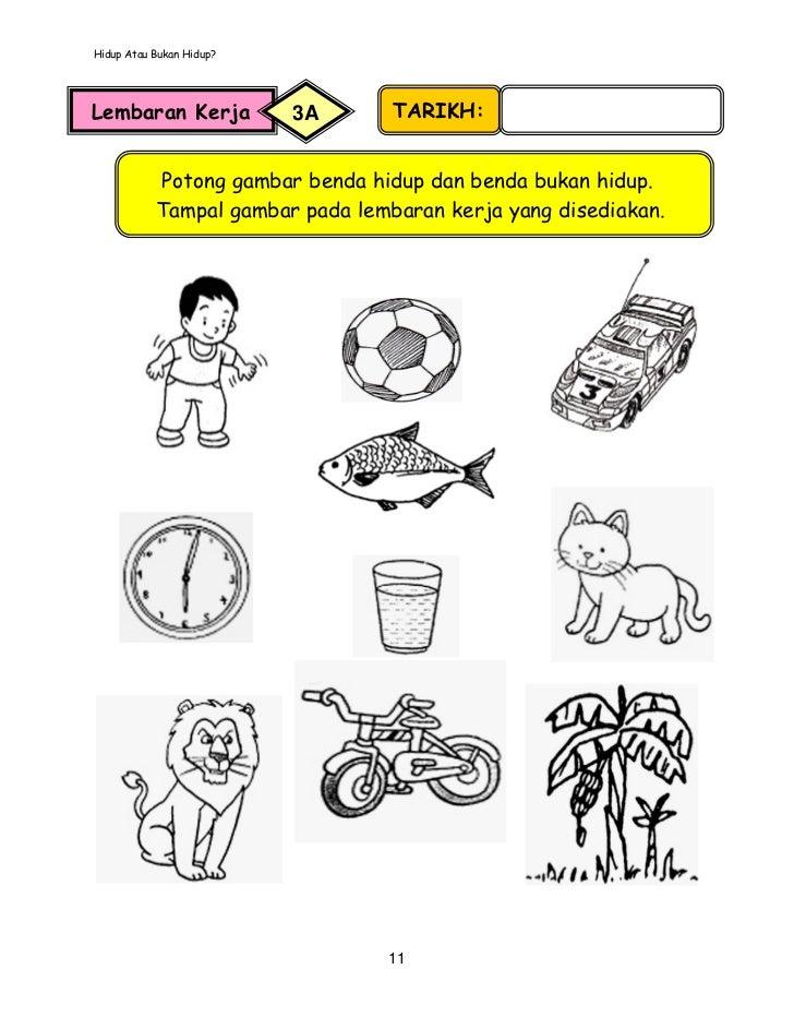 mineral worksheet